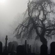 cemetery in misty weather, symbolizing the fear of death, triggered through a past life memory