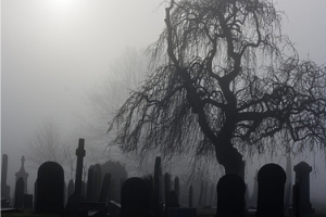 misty graveyard representing the wheel of life